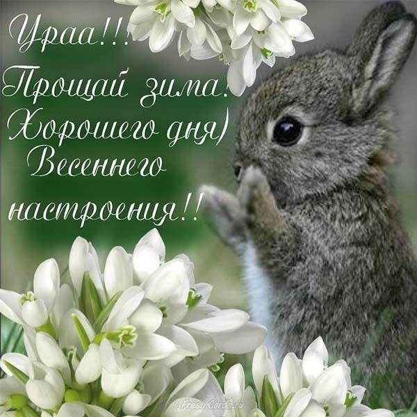 Первым, картинки весна поздравления