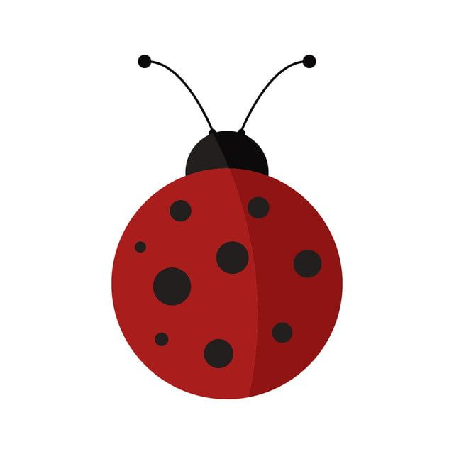Ladybug Icon Ladybird Clipart Feeler Wildlife Png And Vector With Transparent Background For Free Download Bug Art Ladybug Dot Icon