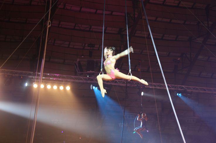 circus san antonio