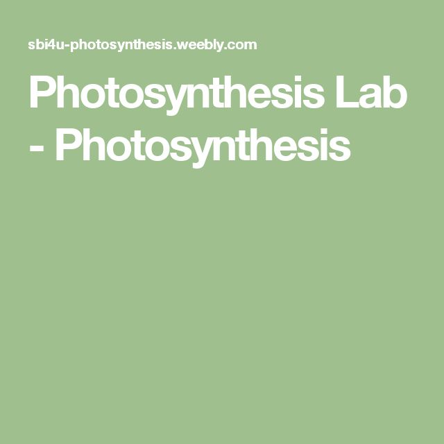 Photosynthesis Lab - Photosynthesis