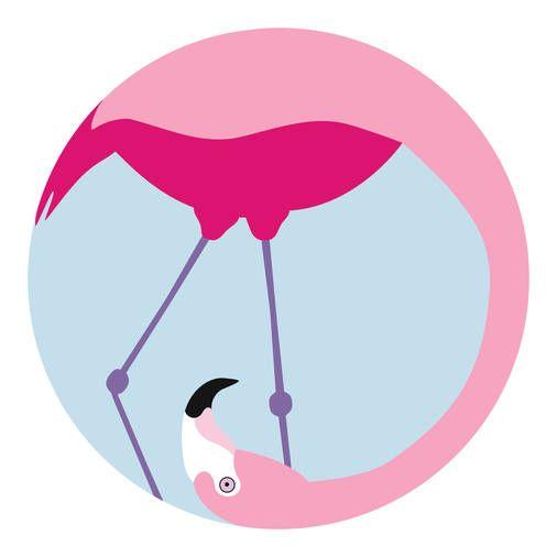 CarpetVista Design Competition 2016, Flamingo by Simona Šimonová, carpet