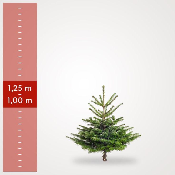 De 25+ bedste idéer til Juletræ Pynt på Pinterest | Kreativ julepynt