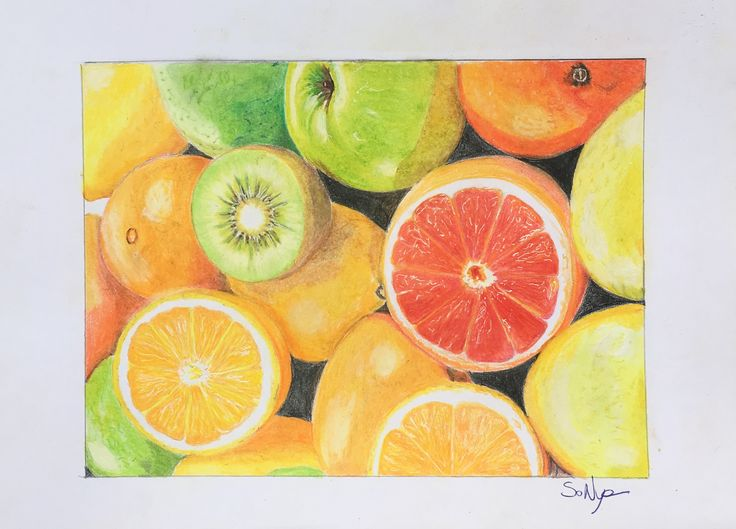 Coloured Pencil Fruits By So Nya
