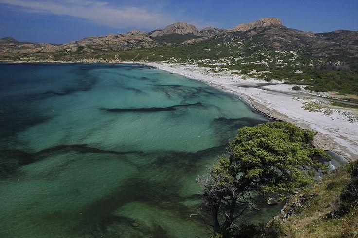 France, Corsica, Desert des Agriates, Balagne, Ostriconi (Perajola) beach