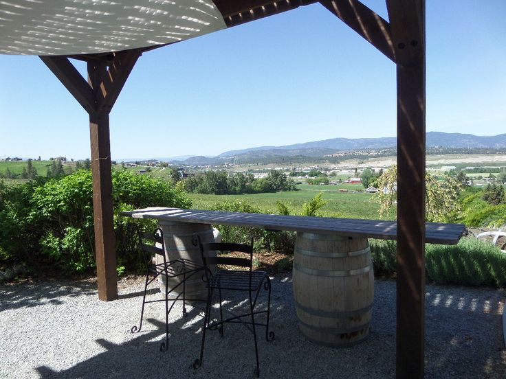 View from Ancient Hill Winery #winery #view #winetasting