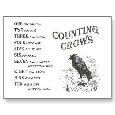 """Crows Ravens:  Vintage """"Counting #Crows"""" Rhyme Postcard, by AMuseDesigns."""