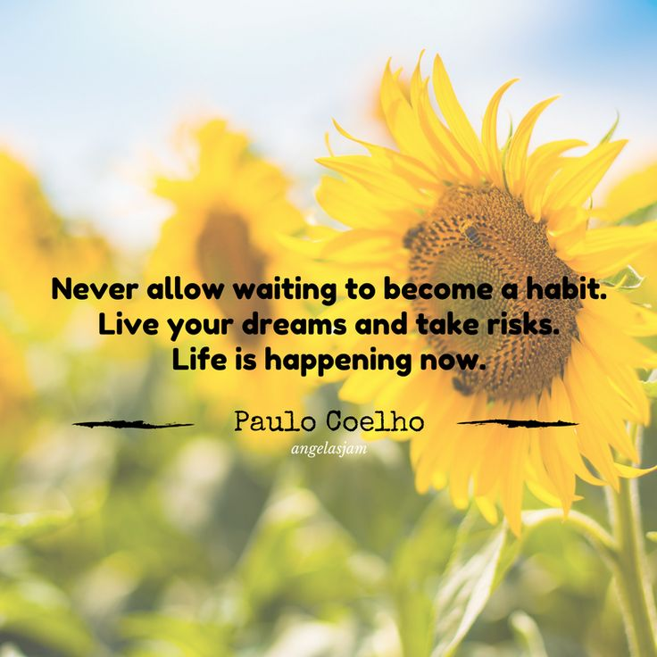 10 Inspirational Quotes | To Get You Through The Day | Paulo Coelho | Life is happening now | Angelas Jam
