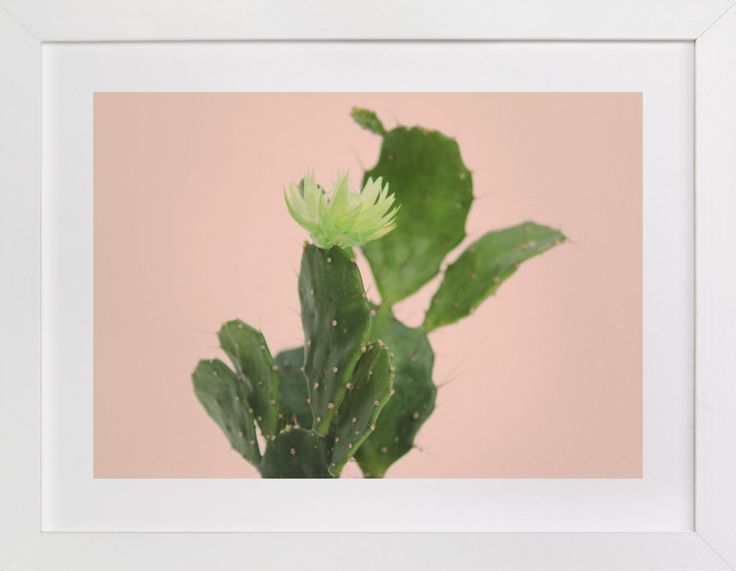 """pink cactus "" by Baumbirdy in beautiful frame options and a variety of sizes."