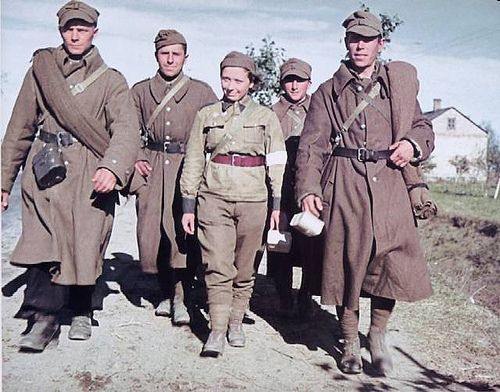 Polish Army soldiers and a Polish nurse in German captivity in Poland 1939, pin by Paolo Marzioli