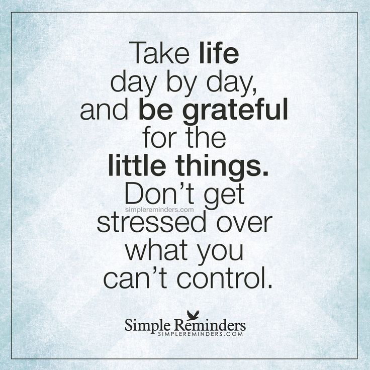 Quotes About Things You Can T Have: Be Grateful For The Little Things Take Life Day By Day