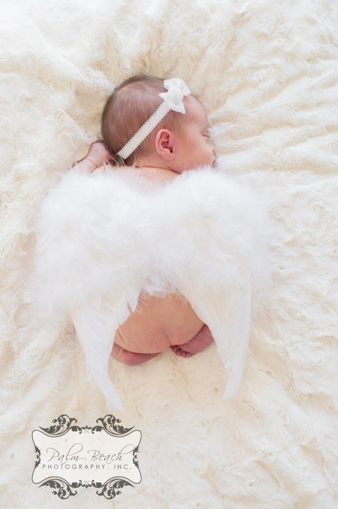 Palm Beach Photography, Inc. palmbeachphotography.net facebook.com/palmbeachphoto    angel newborn photo