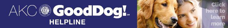 AKC Good Dog!