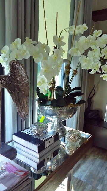 Images about orchid and care on pinterest