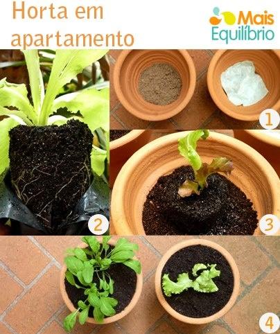 Horta em apartamento - dicas para cultivá-las e passo a passo de como faze-la.  http://maisequilibrio.terra.com.br/horta-em-apartamento-dicas-para-cultivalas-5-1-4-512.html