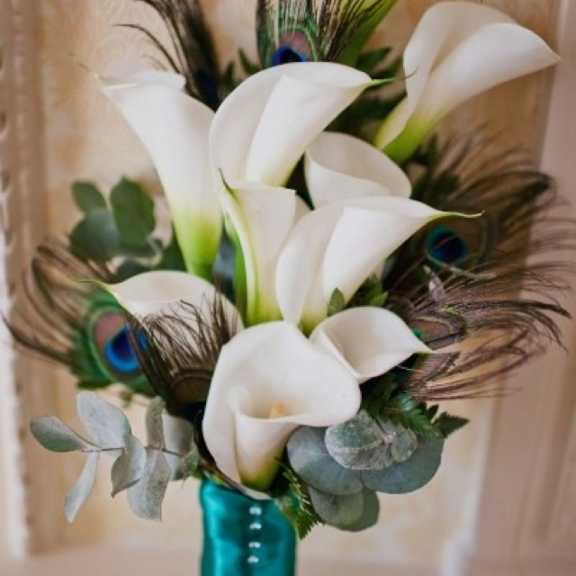 So pretty.Peacock Feathers, Bridal Bouquets, Peacocks Wedding, Wedding Bouquets, Calla Lilies, Calla Lilly, Floral Arrangements, Peacocks Feathers, Peacocks Theme