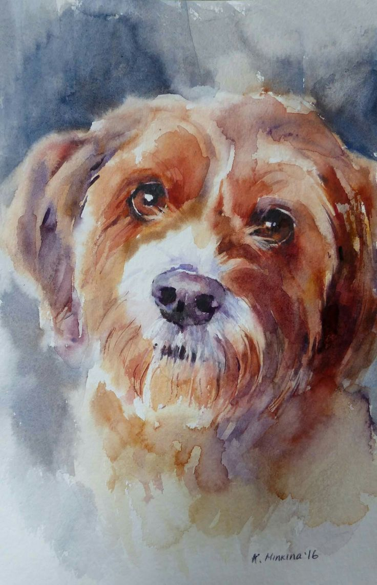 Fine watercolor art for sale - Daily Paintworks Gracie Original Fine Art For Sale Katya Minkina