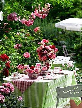 Truly wonderful dining in the garden