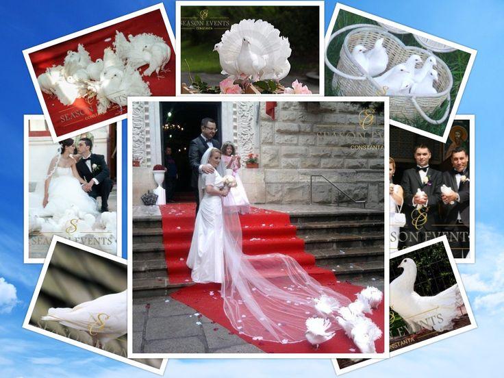 Pentru ca nunta dumneavoastra sa fie ca o poveste cu printi si printese, puteti elibera porumbei albi in Constanta la iesirea din biserica sau la restaurant, la miezul noptii si in orice moment care are insemnatate pentru dumneavoastra. – 0762649069