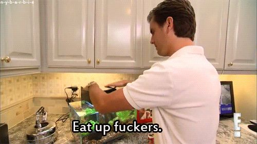 When he lovingly fed the family fish. | 32 Times Scott Disick Just Didn't Give A F*ck