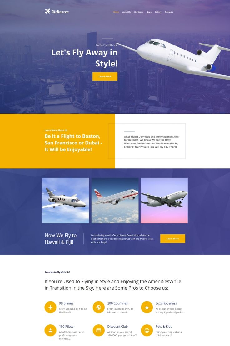 Airlinerra - Private Airline Company Moto CMS HTML Template #66418