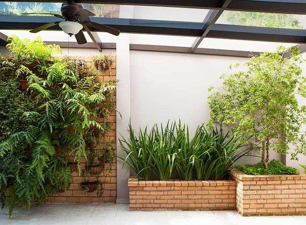 jardim-vertical-suspenso-peperômias-samambaias-falso-íris-jabuticabeira-grama-amendoim (Foto: Edu Castello/Editora Globo)