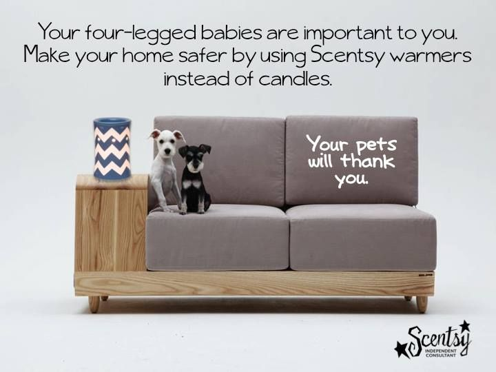 Scentsy Is A Animal Friendly Product Let Me Help You Make