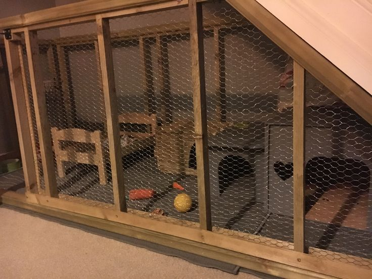 Under stairs Rabbit Enclosure Took a couple of days to