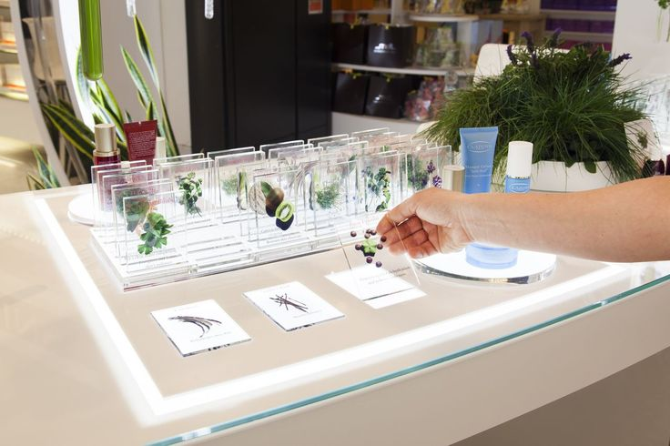 D4R with Clarins to launch their 'Plants, Our Science' Promotion