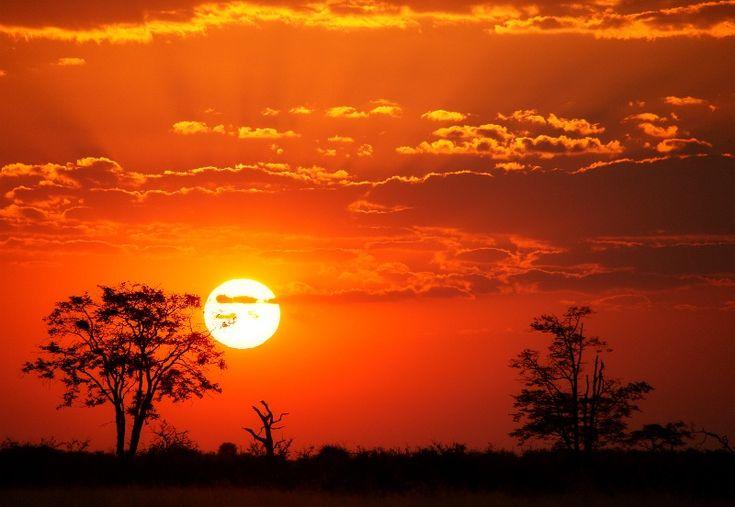 low sun africa - Google zoeken