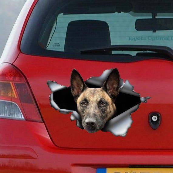 Belgian Malinois Decal Malinois Sticker Belgian Shepherd Dog Belgian Malinois Malinois Belgian Shepherd