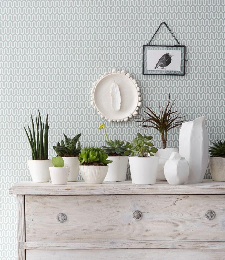 17 migliori idee su vasi da fiori su pinterest coltivare i fiori giardino di fiori e fioriere - Vasi per arredo casa ...