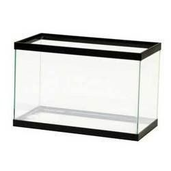 25 best ideas about all glass aquarium on pinterest for Fish tank supplies near me