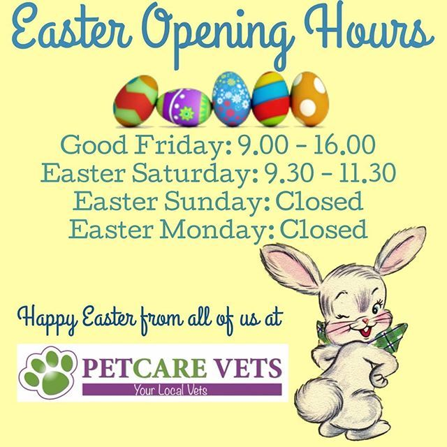 Easter Opening Hours Out Of Hours For Emergencies Available To