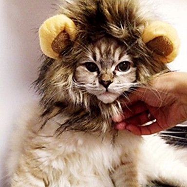 Lovely Hair Accessories for Pets Cats – AUD $ 24.44