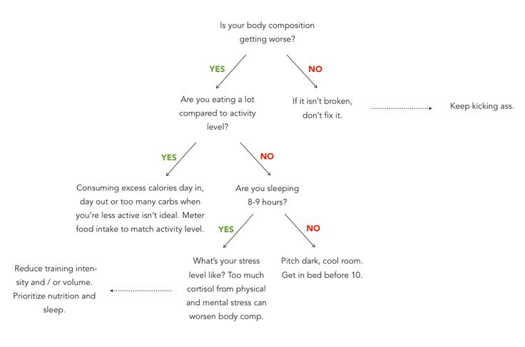 fitt guidelines for body composition