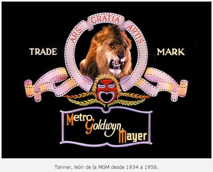 Conoce la historia tras el mítico león de MGM