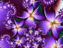 Resultado de imagen de rosas lilas y moradas
