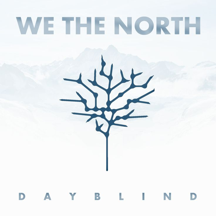 http://spaceracerecords.com/releases/dayblind/