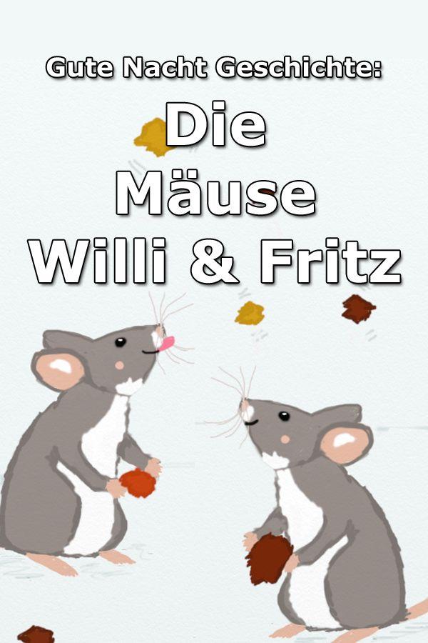 Die Mäuse Willi und Fritz – Gute Nacht Geschichte über das Abenteuer der zwei … – Chrissys Gute Nacht Geschichte