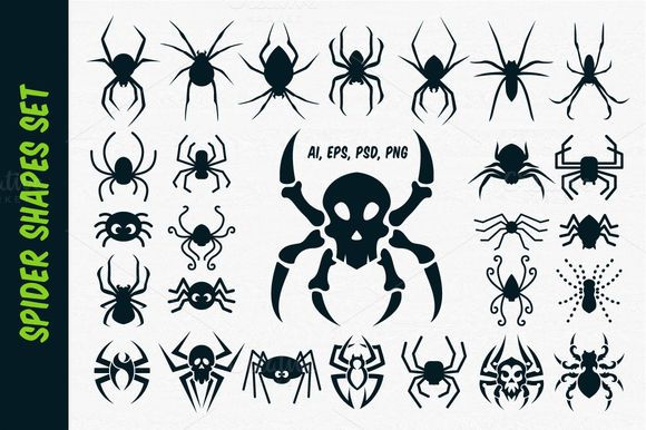 Spider Vector Shapes for Halloween by pixaroma on @creativemarket