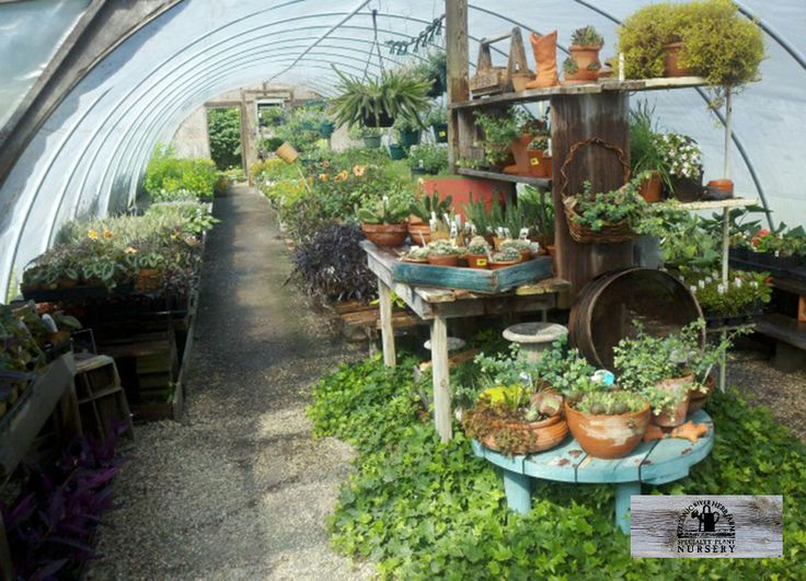 Captivating PECONIC HERB FARM 2749 River Road Calverton, NY 11933 (631) 369 0058