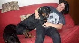 Risultati immagini per prendere in braccio cucciolo di cane