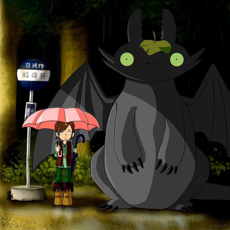 My Neighbor Totoro   How to Train Your Dragon