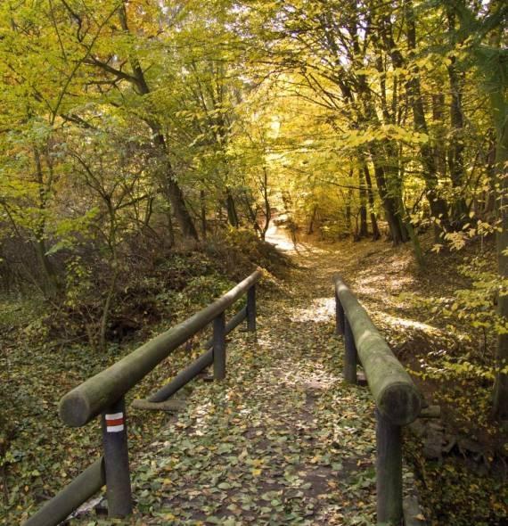 HIKE. Prague, Infinite Hiking Trails