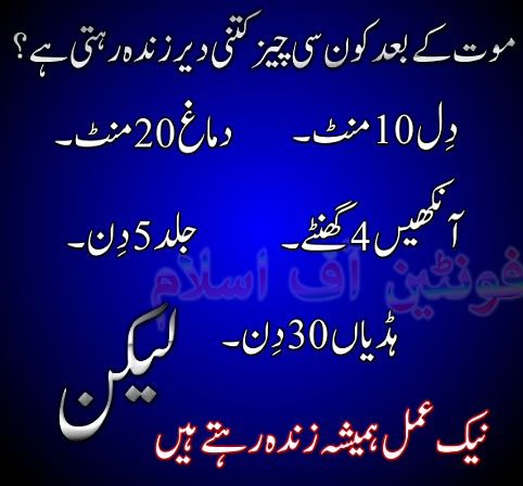 islamic,urdu hadees,urdu artical,: islamic urdu knowledge