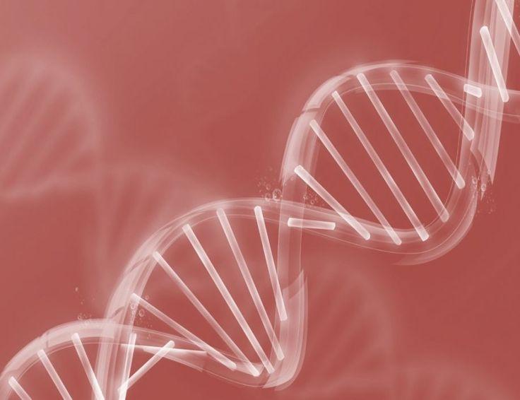 Οι βιταμίνες για την υγεία του γενετικού σας υλικού