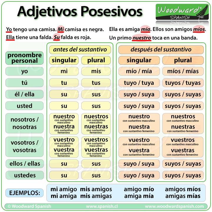 Los adjetivos posesivos en español - Possessive Adjectives in Spanish