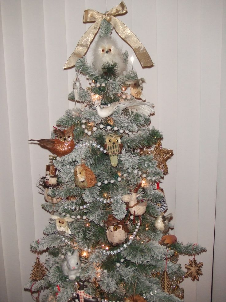 Pretty Christmas Tree Pictures