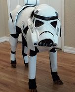 Creative costume ideas for dogs: Stormtrooper Dog Homemade Costume