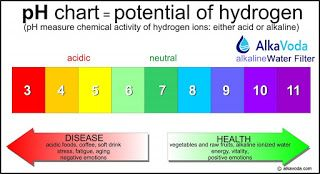 Alkaline Water Reviews: About pH